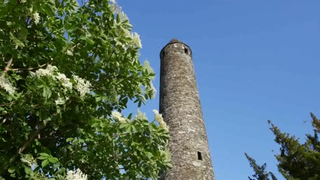 Ireland-Glendalough-Round-Tower-Top-With-Elderflower-Shrub