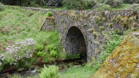 Ireland-The-Vee-Stone-Bridge-With-Vegetation-
