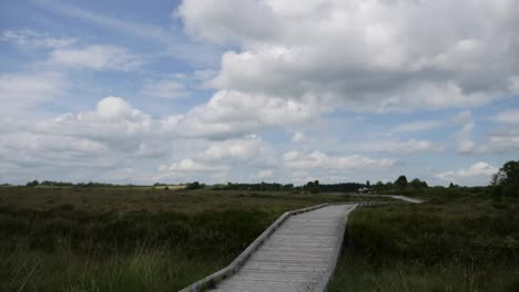 Ireland-Clara-Bog-Boardwalk