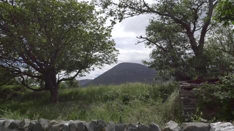 Ireland-County-Mayo-Croagh-Patrick-Through-Trees