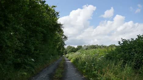 Ireland-County-Offaly-County-Lane