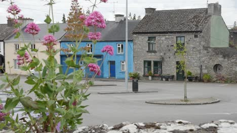 Ireland-County-Offaly-Small-Town-Houses-With-Flowers