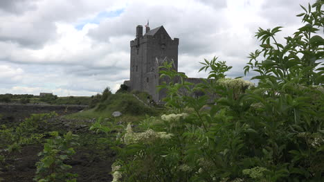 Ireland-Dunguaire-Castle-With-Tourists-Climbing-Steps