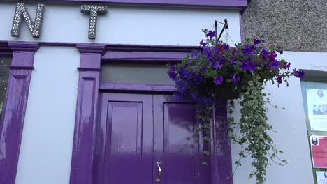 Ireland-Flowers-By-A-Purple-Door