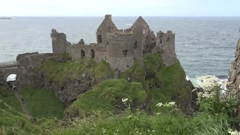 Northern-Ireland-Dunluce-Castle-And-Queen-Annes-Lace-Zoom-In