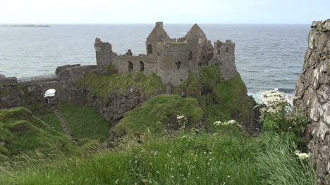 Northern-Ireland-Dunluce-Castle-And-Queen-Annes-Lace
