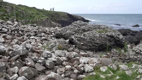 Northern-Ireland-Giants-Causeway-Lichen-Crusted-Rocks