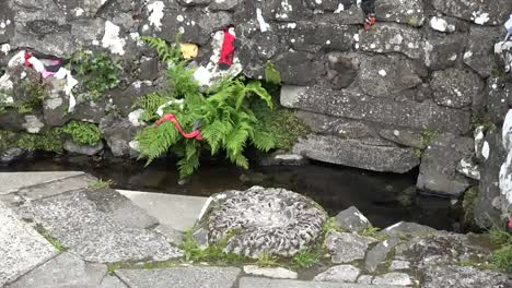 Northern-Ireland-St-Aidans-Holy-Well-With-Fern-And-Bullaun-Stone