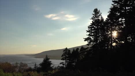 Canada-New-Brunswick-Sun-Peeps-Through-Trees-On-Coast