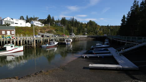 Canada-Sea-Gull-Lands-Near-Docks-With-Tide-Going-Out