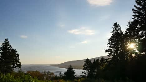 Canada-Sun-Through-Trees-By-Coast
