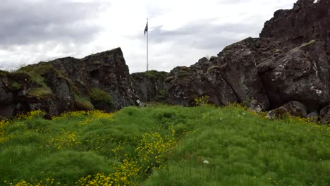 Iceland-Pingvellir-Flag-Over-Rift-With-Foreground-Flowers