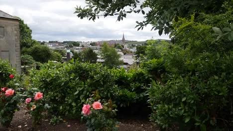 Northern-Ireland-Downpatrick-Northern-Ireland-View