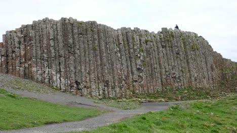 Northern-Ireland-Giants-Causeway-Man-On-Top-Of-Columns-