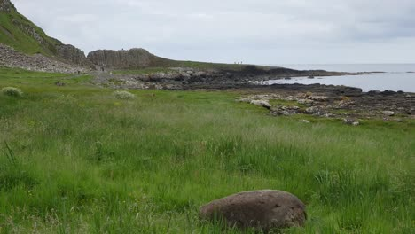 Northern-Ireland-Giants-Causeway-Rock-In-Grass-
