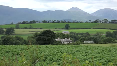 Northern-Ireland-Mountains-Of-Mourne-Behind-Fields-