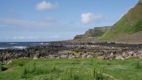 Northern-Ireland-Grass-Rocks-Weeds-En-Route-To-Giants-Causeway-