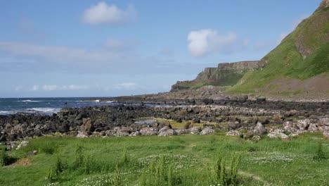Northern-Ireland-Grass-Rocks-Weeds-En-Route-To-Giants-Causeway-
