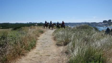 Oregon-Bandon-Horses-By-River