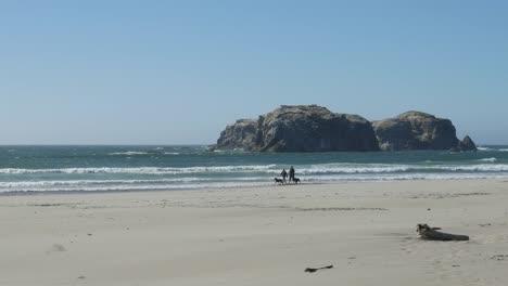 Oregon-Mit-Hund-Am-Strand-Spazieren-Gehen