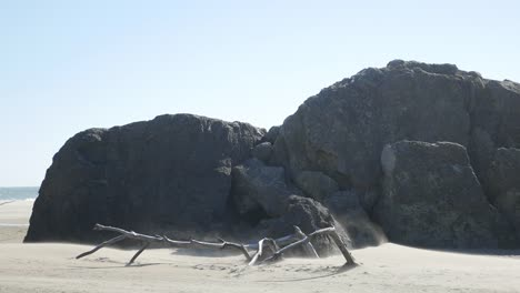 Sand-Rocks-And-Driftwood