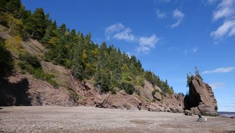 Canada-New-Brunswick-Hopewell-Rocks-People-Walk-With-Dogs