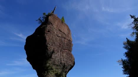 Canada-New-Brunswick-Hopewell-Rocks-Top-Of-Rock