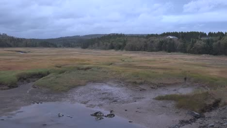 Canada-Nova-Scotia-Tidal-Mud-Flat-And-Marsh-Pan