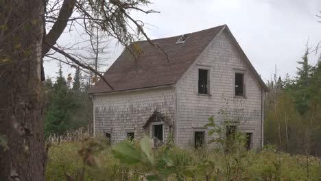 Canada-Nova-Scotia-Tree-With-Abandoned-House