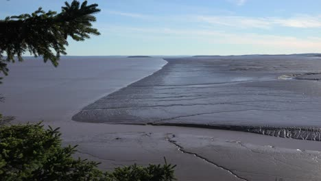 Canada-Looking-Out-Over-Bay-Of-Fundy-Mud-Flats