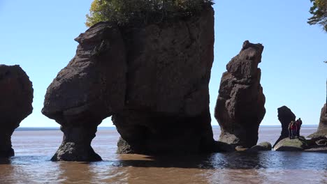 Canada-People-Stand-On-Rocks-At-Hopewell-Rocks