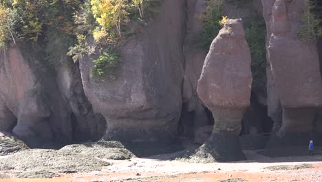 Canada-Tourists-Look-Small-By-Wave-Carved-Landforms-At-Hopewell-Rocks