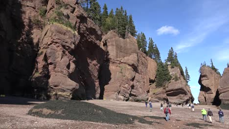 Canada-Tourists-Walking-In-Sunshine-At-Hopewell-Rocks