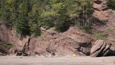 Canada-Trees-Grow-On-Red-Cliffs-At-Hopewell-Rocks