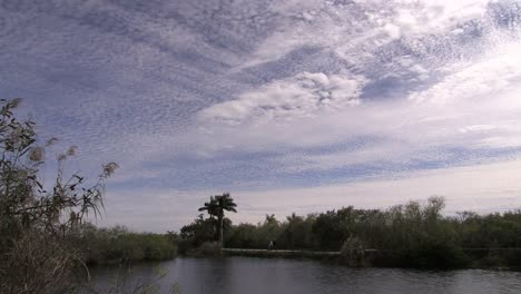 Florida-Everglades-Interesting-Sky-With-High-And-Middle-Altitude-Clouds