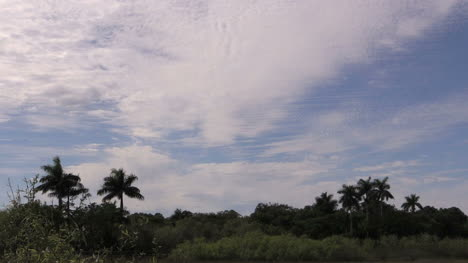 Florida-Everglades-Sky-Nearly-Covered-With-Clouds