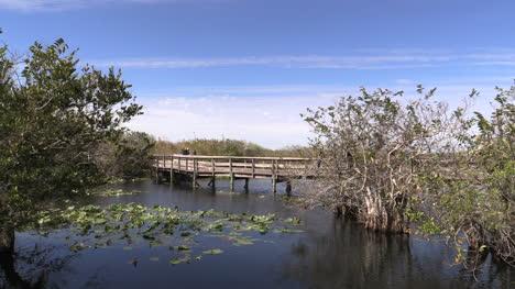 Florida-Everglades-Boardwalk-In-Lake