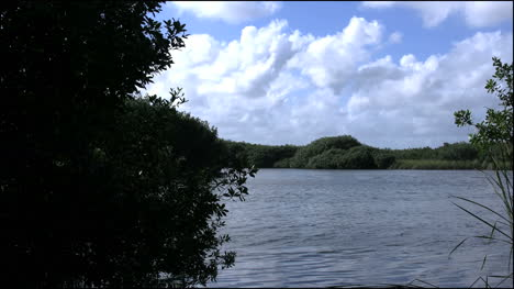 Florida-Everglades-Lake-And-Clouds