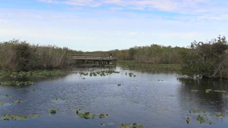Florida-Everglades-Lake-And-Observation-Platform