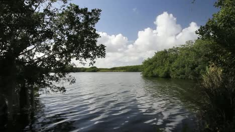 Florida-Everglades-Lake-With-Cumulus-Clouds