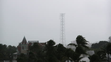 Florida-Key-West-Palm-And-Tower-With-Light-In-Rain