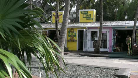 Florida-Key-West-Shops-And-Palmetto