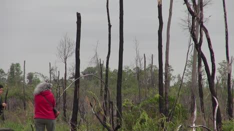 Florida-Boy-And-Woman-View-Windy-Marsh-Scene