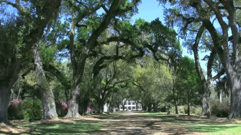 Louisiana-Rosedown-Plantation-House-In-Distance