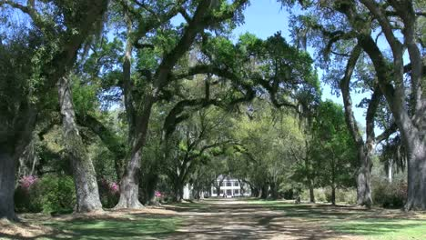 Louisiana-Rosedown-Plantation-House-View