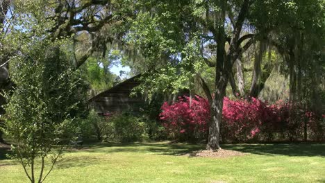 Louisiana-Rosedown-Plantation-Cabin