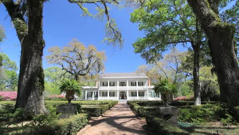 Louisiana-Rosedown-Plantation-House-Framed-In-Trees