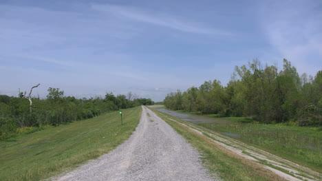 Louisiana-Levee-And-Marshy-Ground