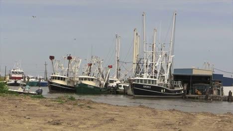 Louisiana-Garnelenboote-Kleines-Fischerboot-Und-Vögel