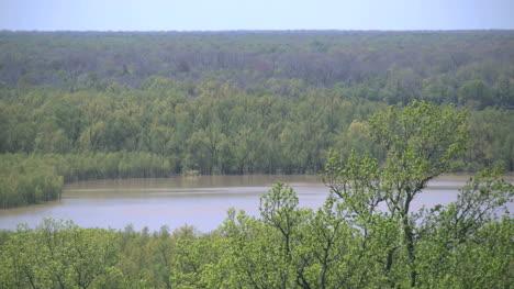 Mississippi-Vicksburg-Mississippi-Backwater